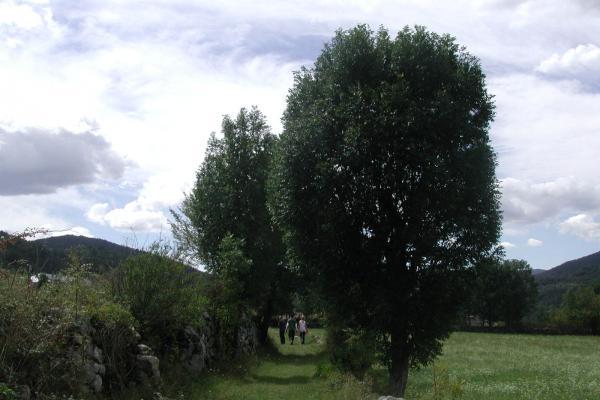 Ruta de la vall de Barravés imatge